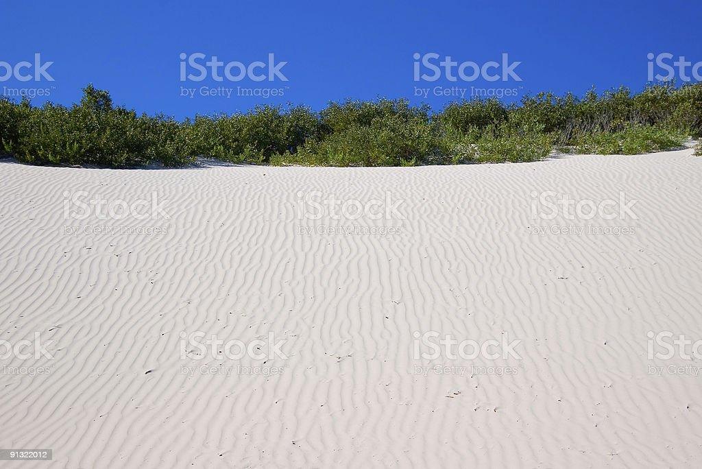 Stark coastal colours: white sand dune, green vegetation, blue sky stock photo