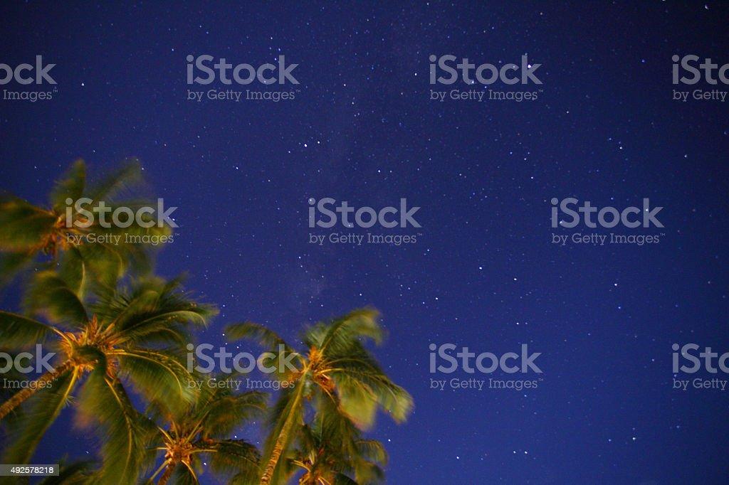 Starlit Sky stock photo