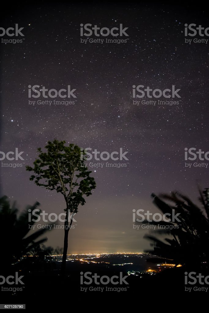 Starry night and milky way with trees and citylight. stock photo