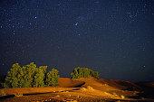 Starry night at Saharan oasis