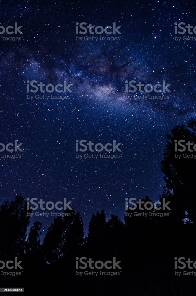 Starry ночь Стоковые фото Стоковая фотография