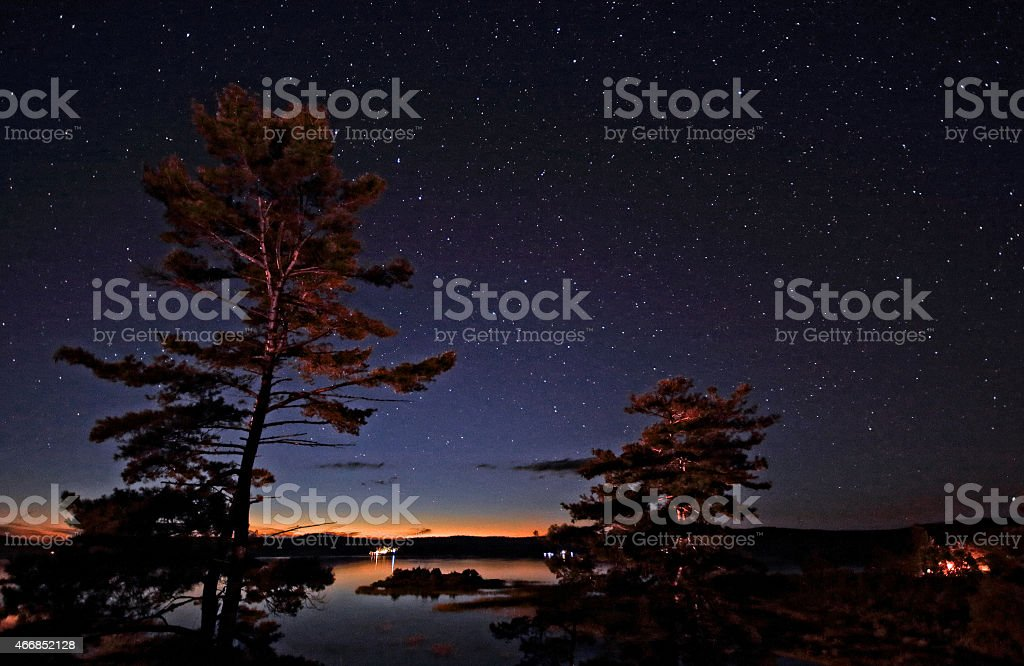 starry sky above lake and trees stock photo