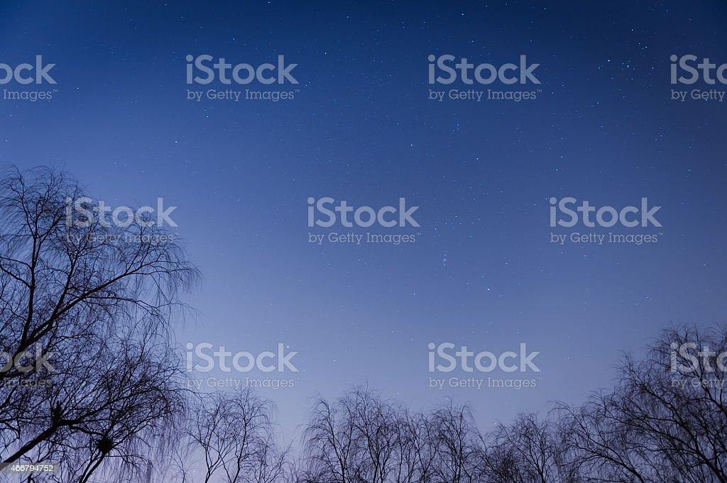 Starry sky in winter stock photo
