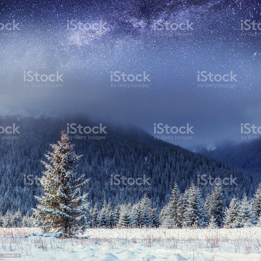 starry sky in winter snowy night. Carpathians, Ukraine, Europe stock photo