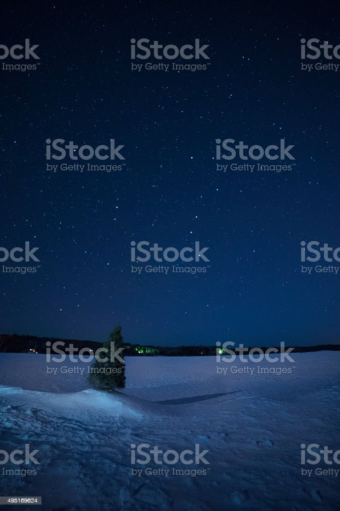 Starry sky over snowy lake with a pine tree stock photo