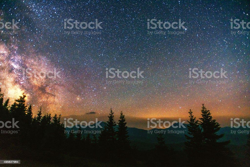 Starry sky through the trees stock photo