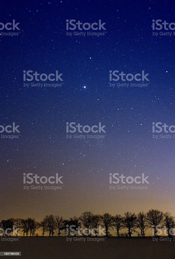 Stars on a cold winter night stock photo