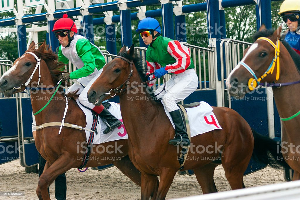 Start horse racing. stock photo
