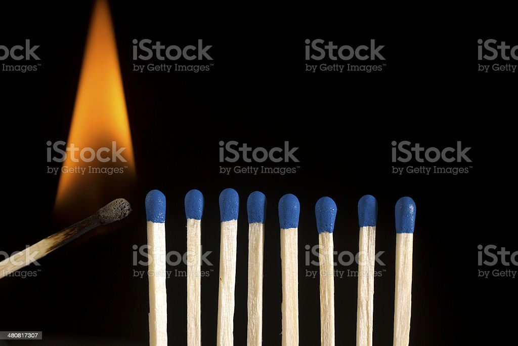 Starting the Fire; Wooden Matches In Row Ready To Burn stock photo