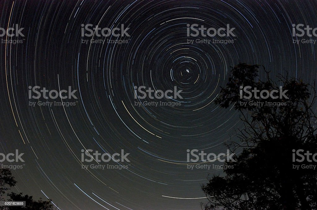 Startrail with tree silhouette at night stock photo