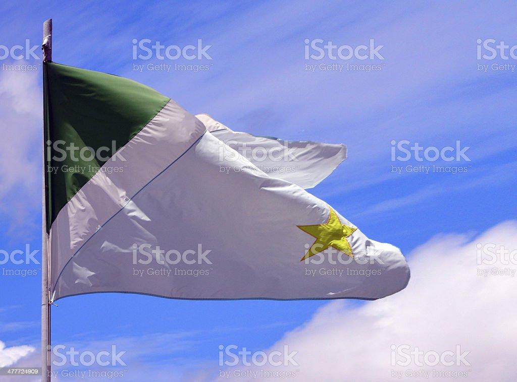 State flag of Mato Grosso do Sul - Brazil stock photo