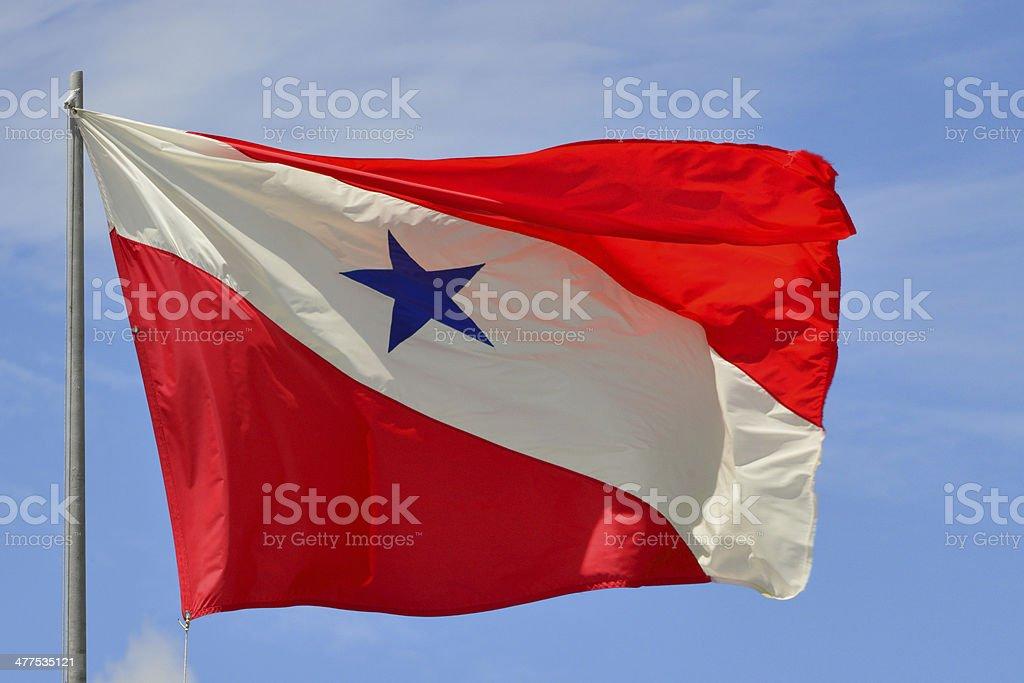 State flag of Par? - Brazil stock photo