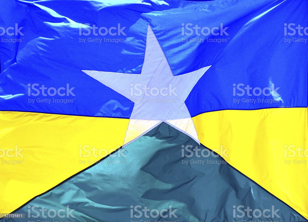 State flag of Rond?nia - Brazil stock photo
