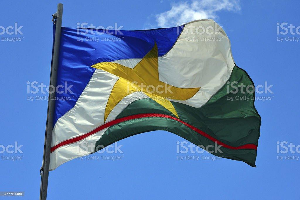 State flag of Roraima - Brazil stock photo