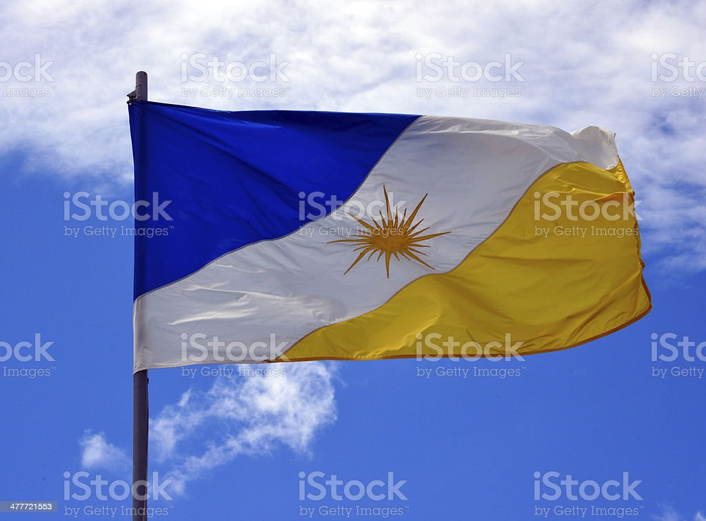 State flag of Tocantins - Brazil stock photo