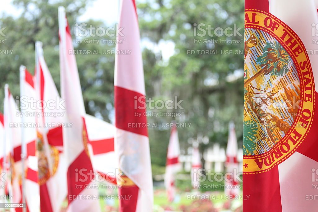 State of Florida flags at Tallahassee Capitol Complex stock photo