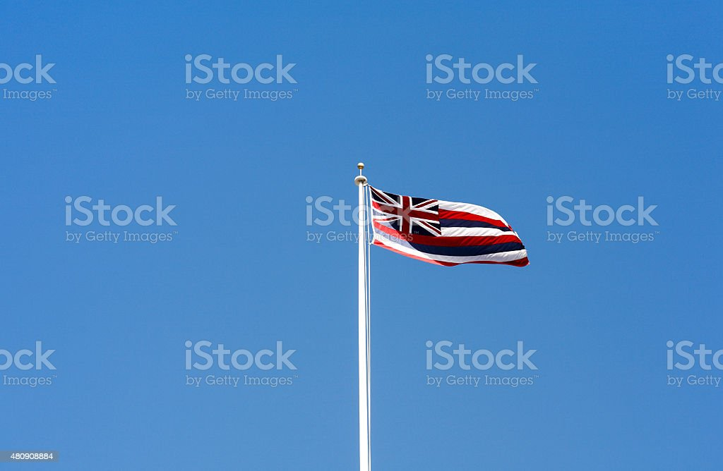 State of Hawaii flag. stock photo