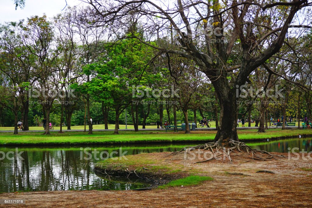 State Railway Public Park is a name of public park stock photo