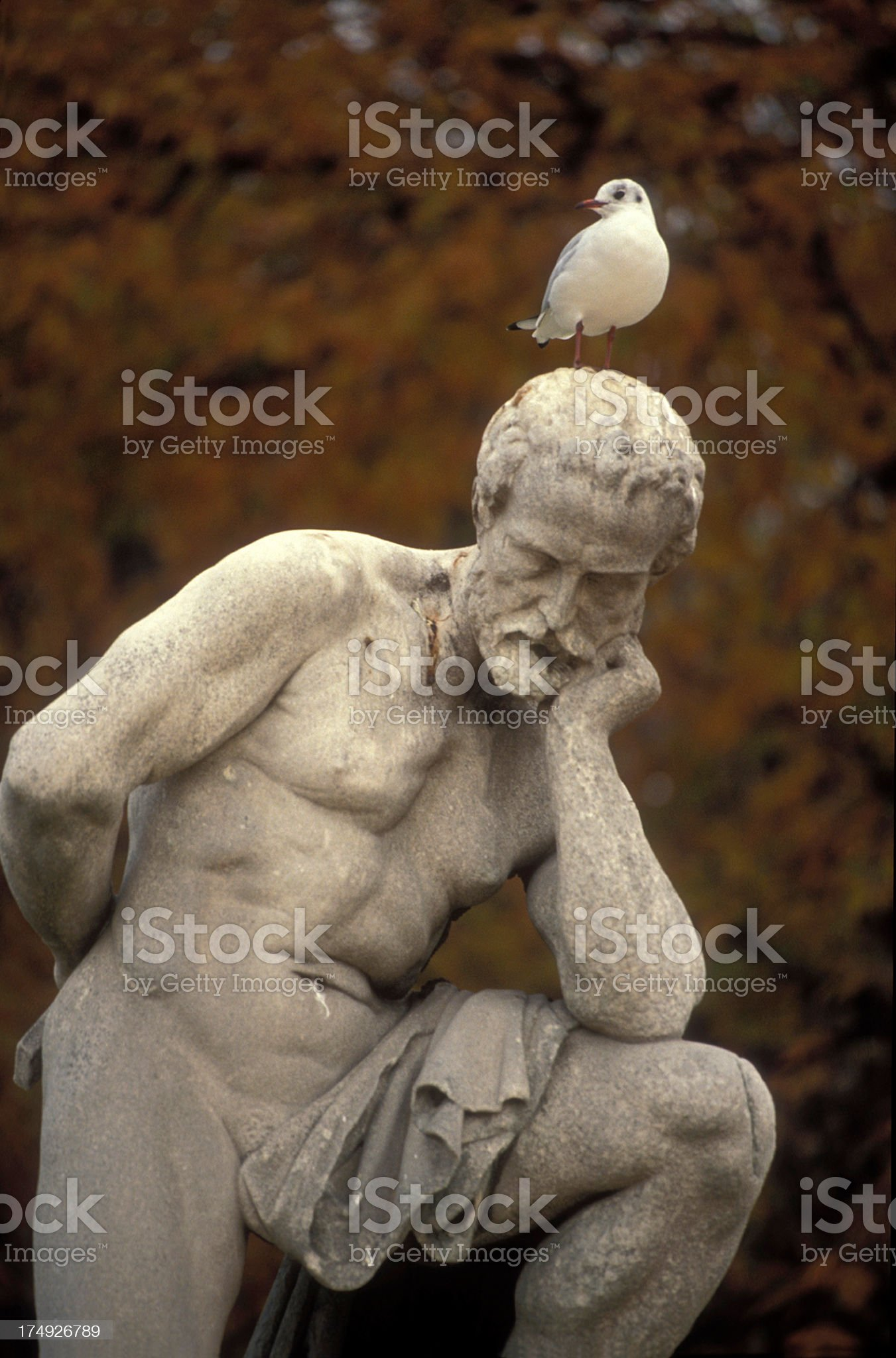 A statue of an old man thinking with a bird on his head royalty-free stock photo