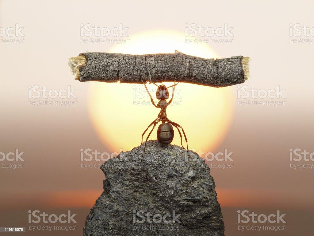 Statue of Labour, ants civilization stock photo