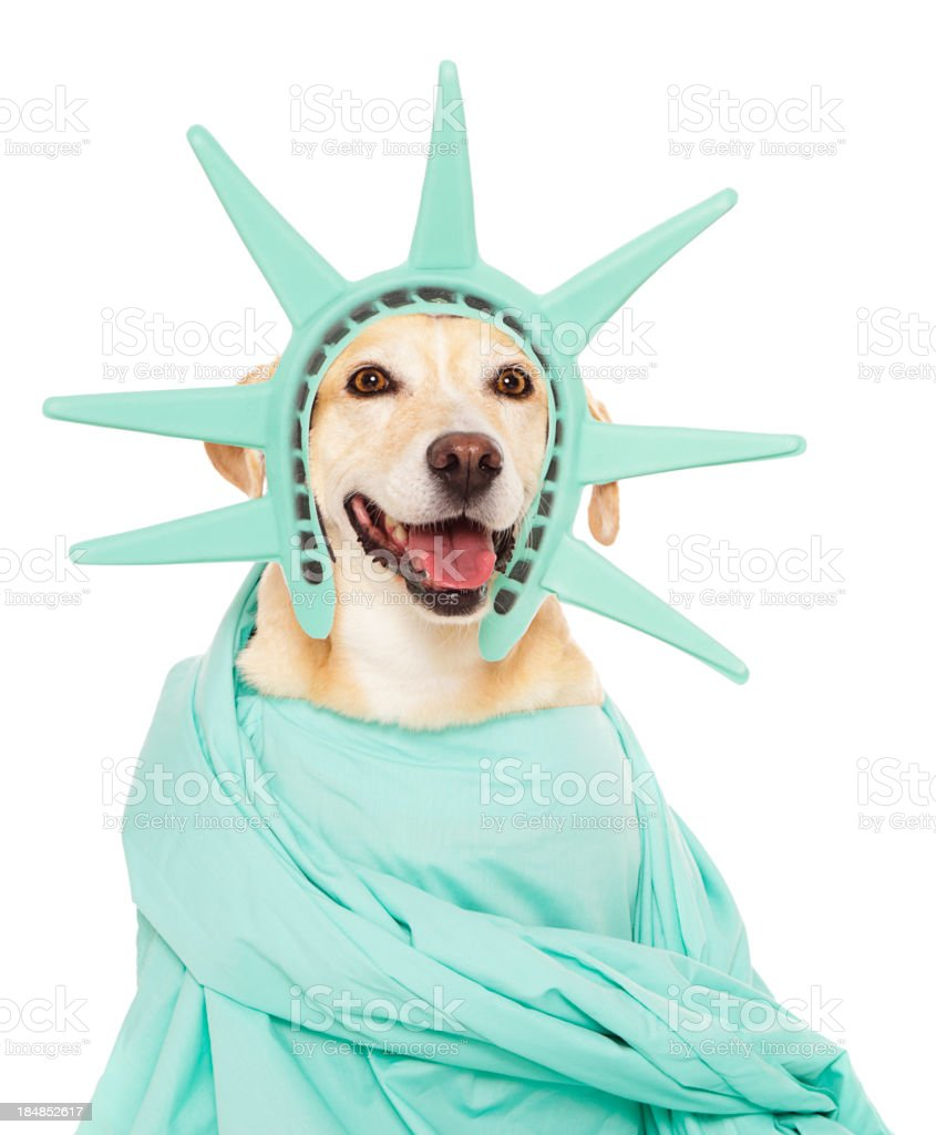 Statue of Liberty Dog stock photo