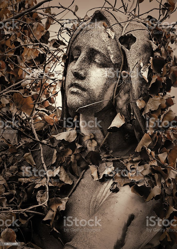 Statue of Madonna Covered in Leaves royalty-free stock photo
