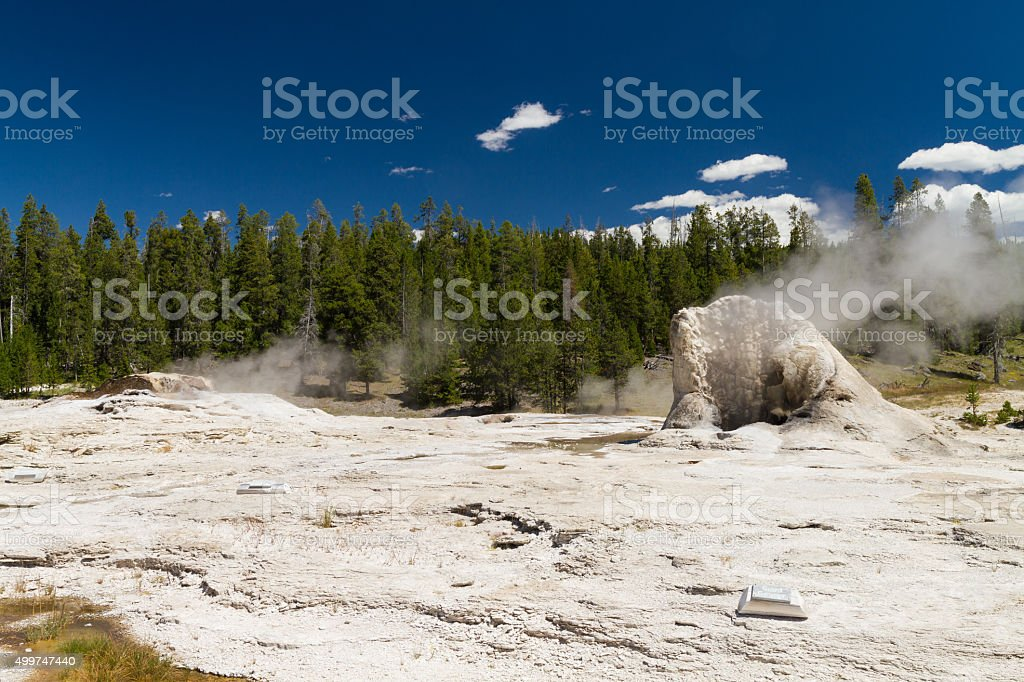 Steam at Giant Geyser stock photo
