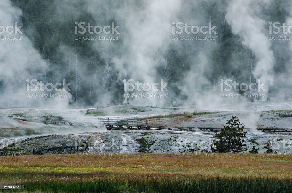 Steam Rising from Geyser Hill stock photo