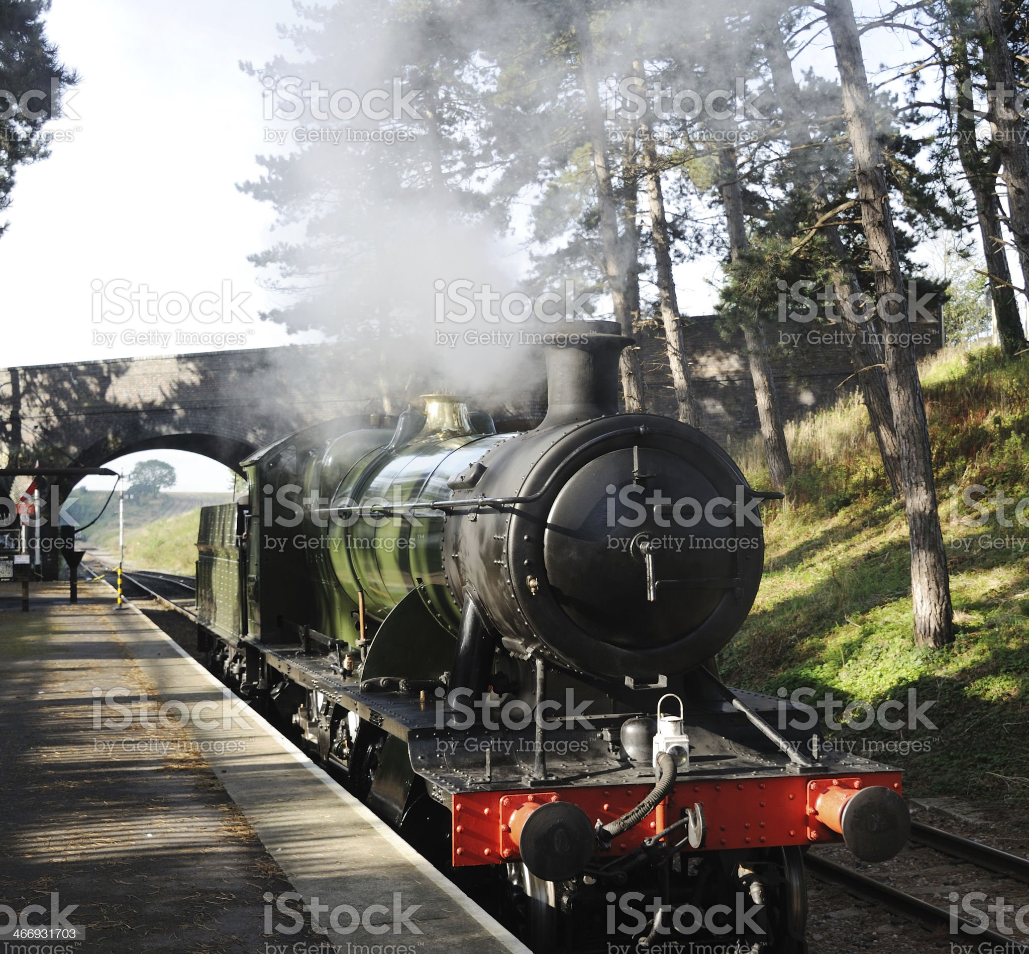 Steam Train at Cheltenham Racecourse royalty-free stock photo