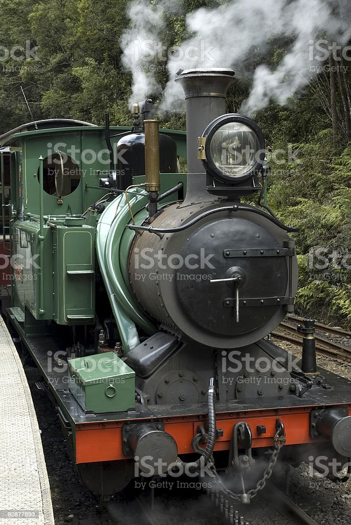 Steam Train in Tasmanian Wilderness stock photo