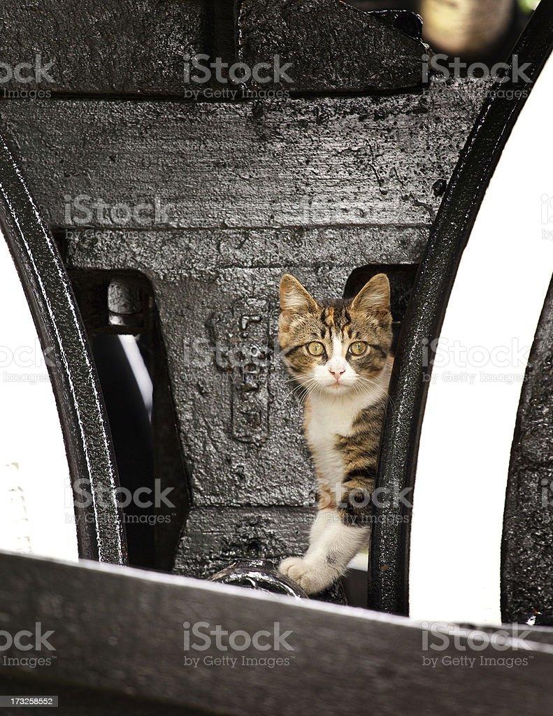 Steam Train Wheel royalty-free stock photo