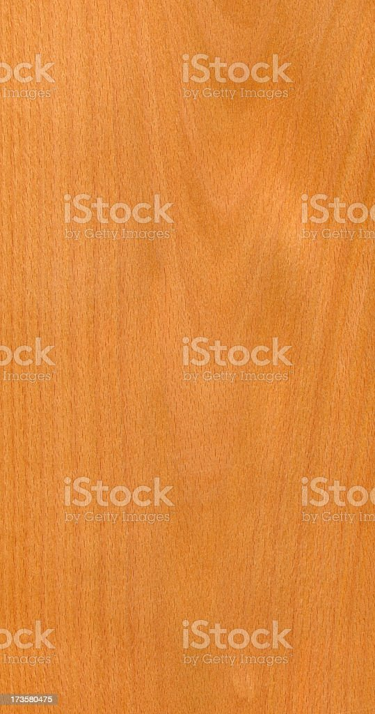 Steamed beech stock photo