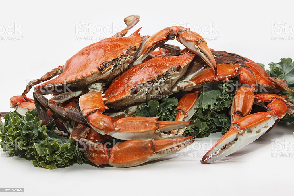 Steamed Blue Crab royalty-free stock photo