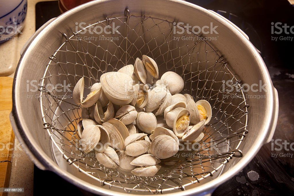 Steamed Clams stock photo