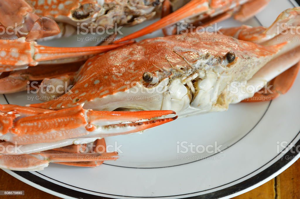 steamed flower crab on white dish stock photo
