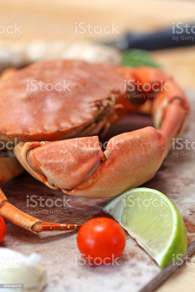 Steamed Stone Crab stock photo