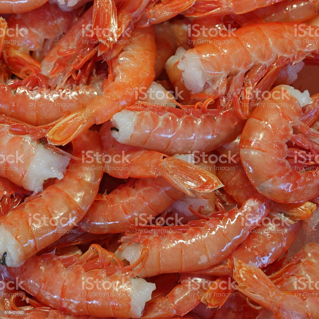 steamed tail on shrimps background stock photo