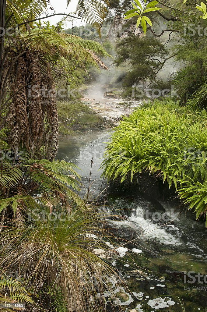 Steaming stream stock photo