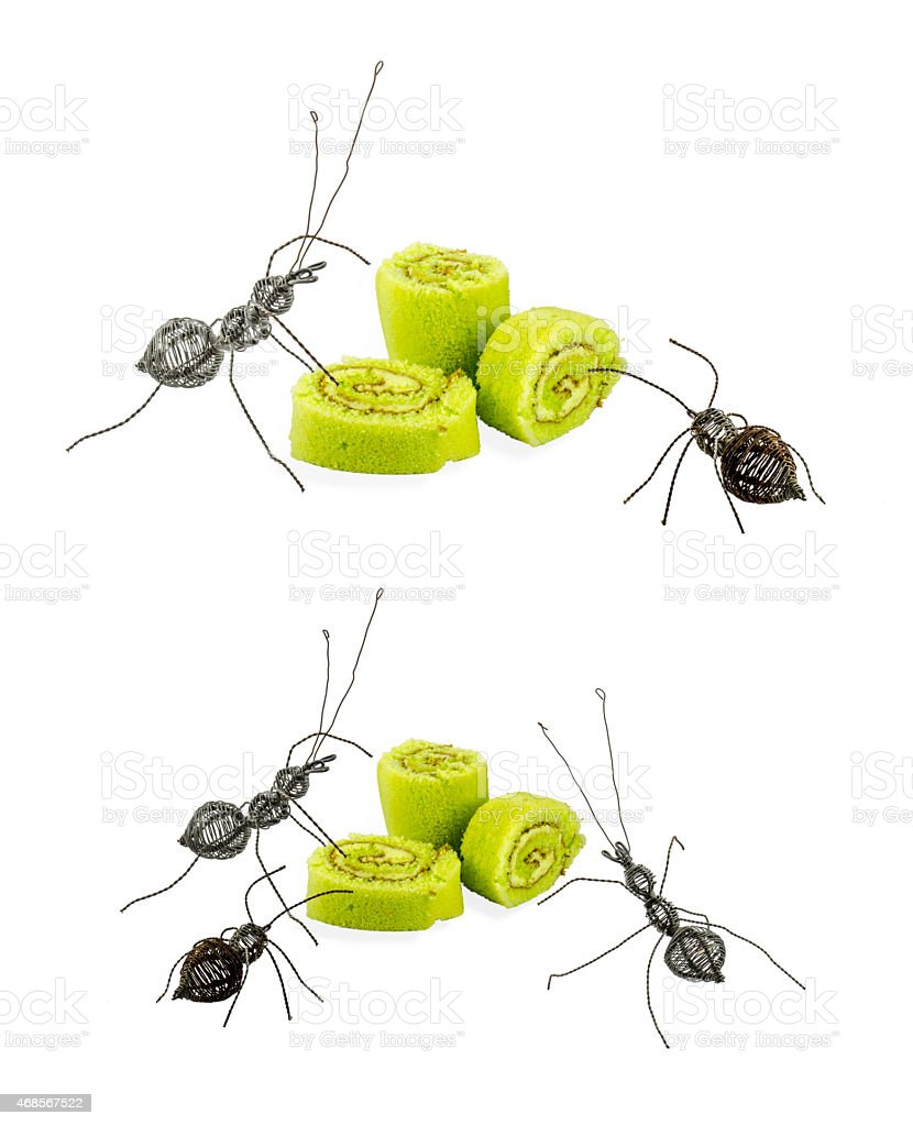 Steel ant and cake role stock photo