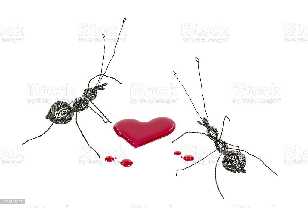 Steel ant and heart syrup stock photo