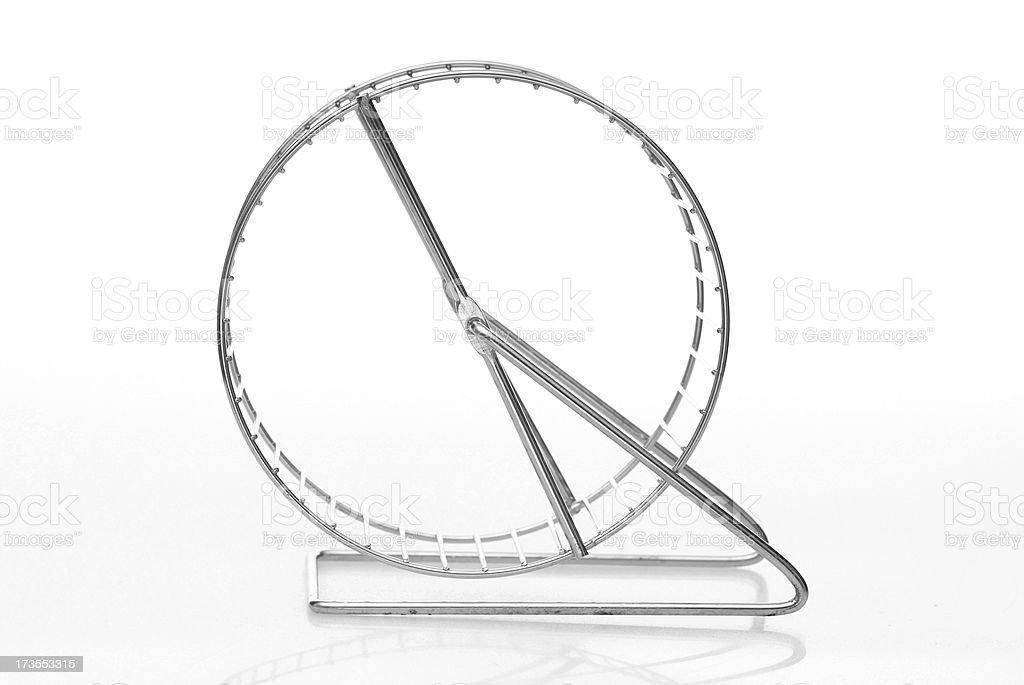 steel exercise wheel for small pet stock photo