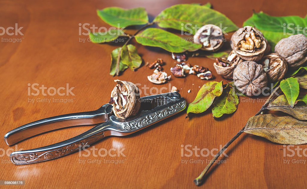 Steel Nutcracker against background of group of walnuts stock photo