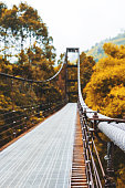 Steel slings of suspension bridge, with forest in autumn