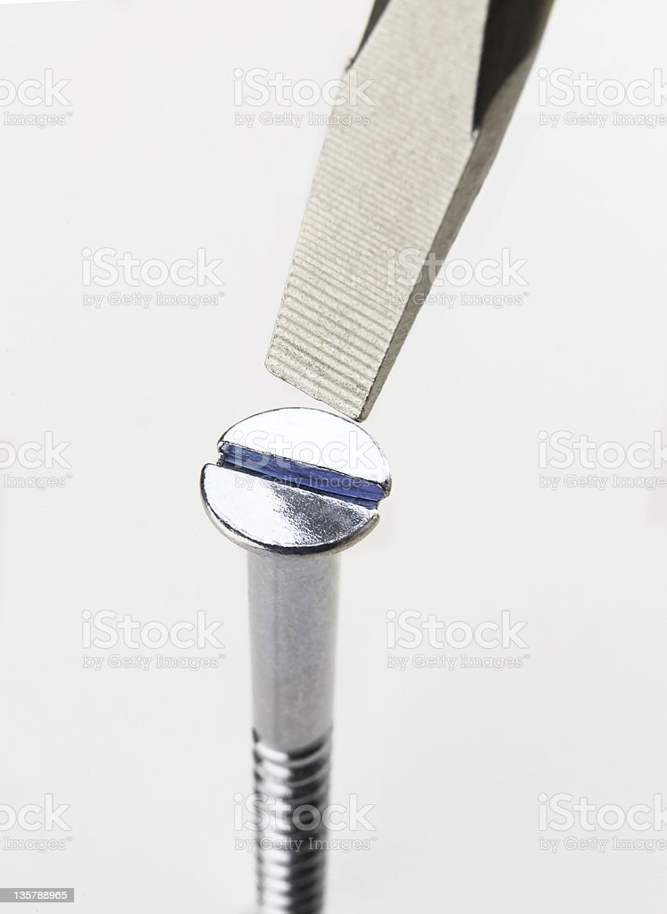 Steel wood screw & slotted screwdriver royalty-free stock photo