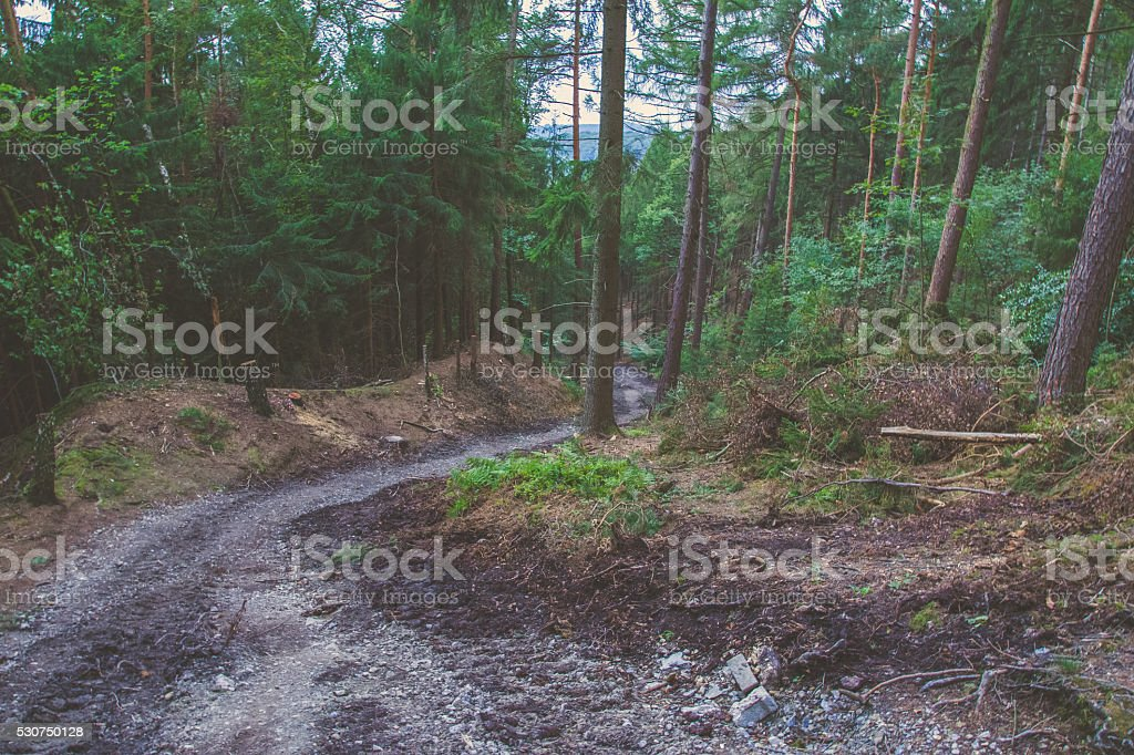 Steep Dirt Trail on German Mountainside stock photo