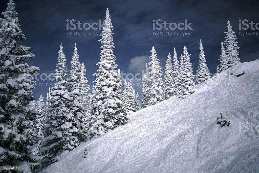 Steep Ski Slope at Steamboat stock photo