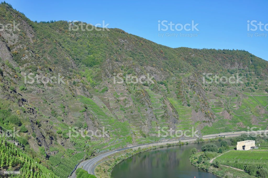 steep Vineyard,Mosel Valley,Germany stock photo