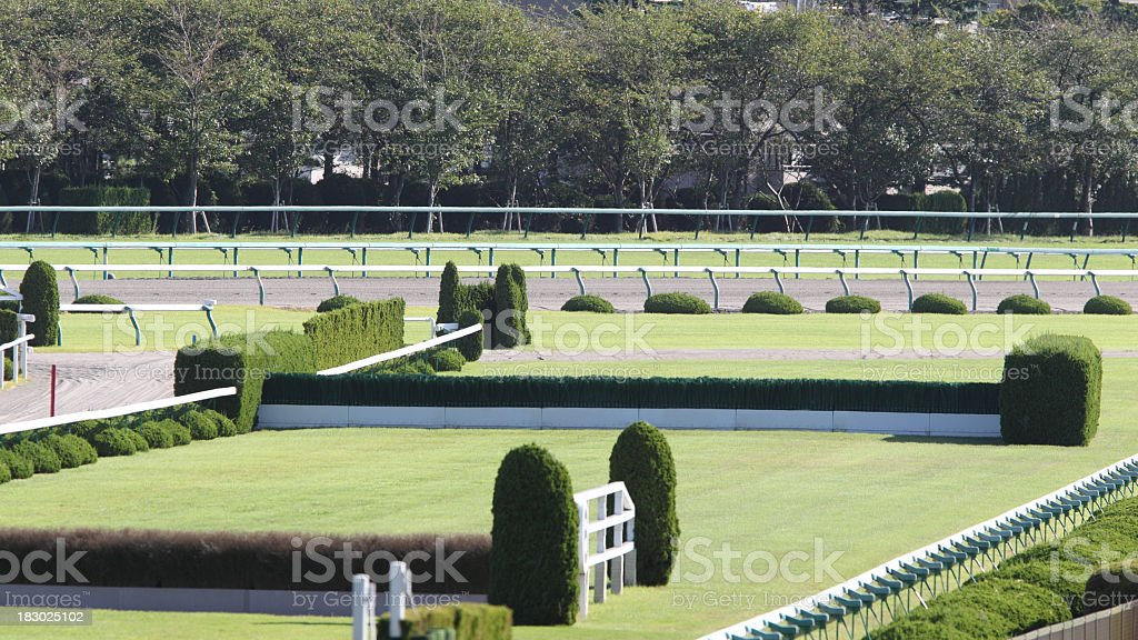 Steeplechase course green hedges stock photo