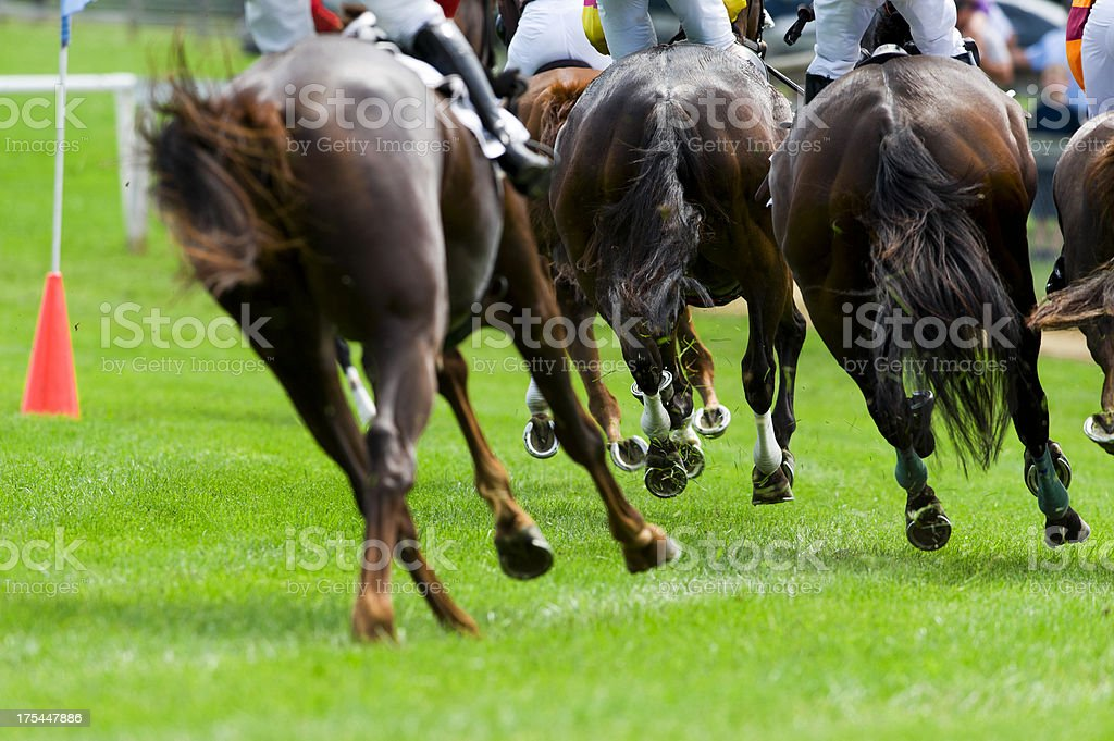 Horse Racing - Steeple Chase stock photo