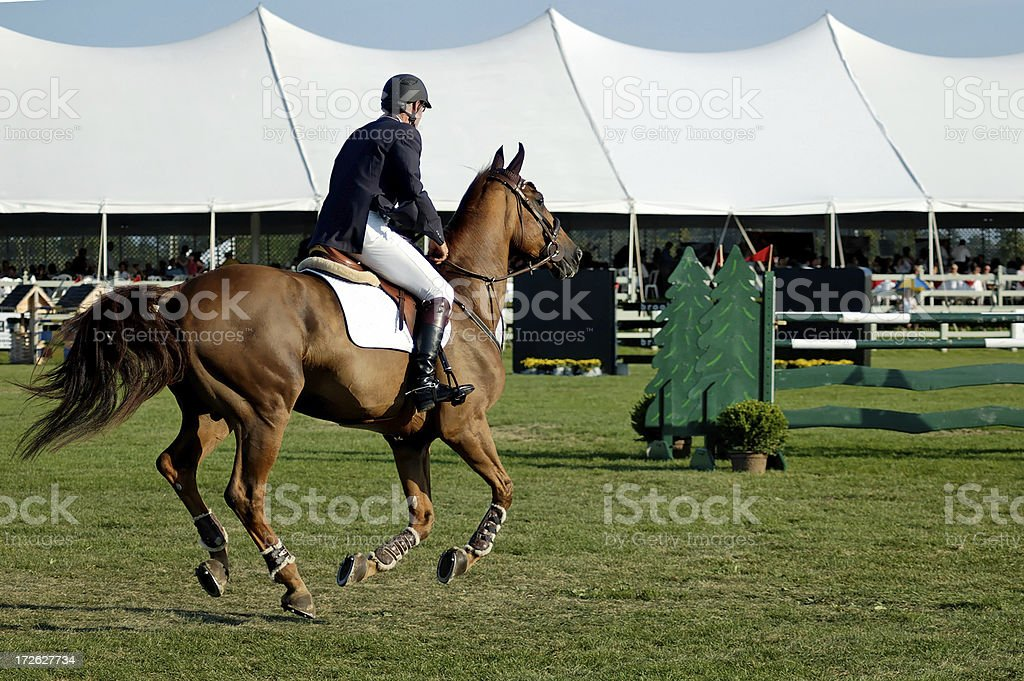 Steeplechase royalty-free stock photo